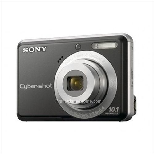 sony cyber shot 10.1 megapixel digital camera manual