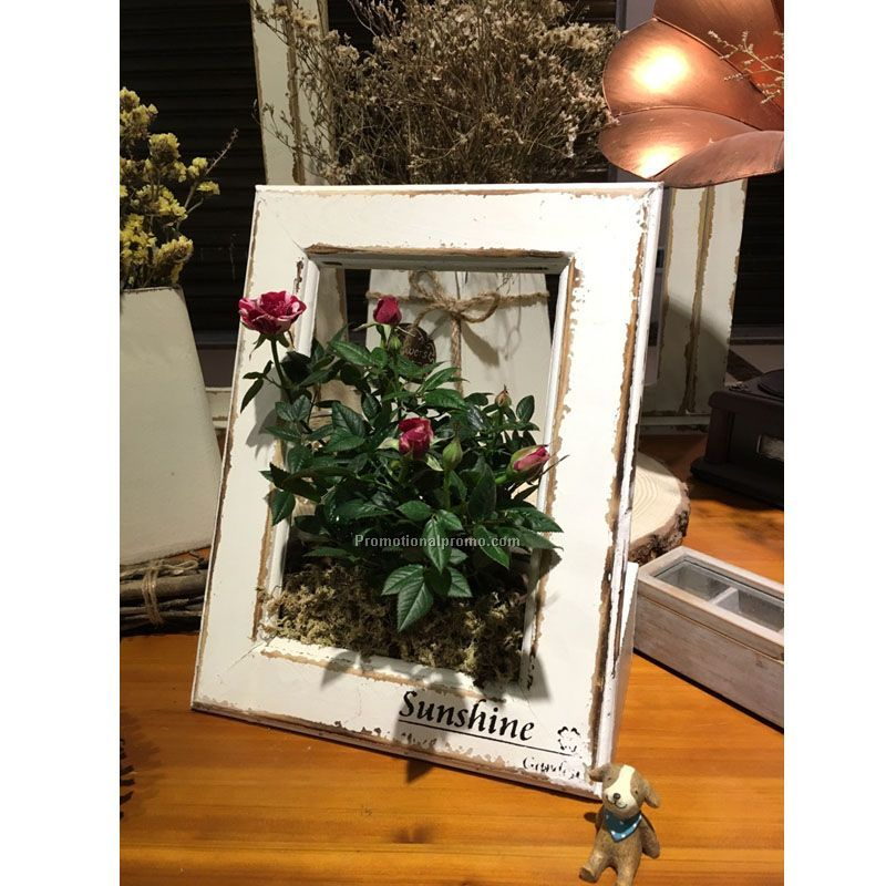Multi-function photo frame flowerpot