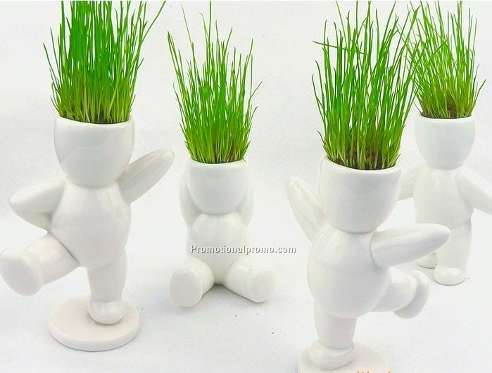 Potted Plant China Wholesale Potted Plant